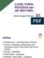 Algae Fungi Protozoa Dan Parasit Multisel2