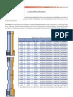 004 Lubricator Risers