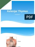 Kelenjar Thymus