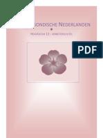 De Bourgondische Nederlanden - Verbetersleutel