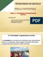 DESARROLLO SUSTENTABLE 3.1