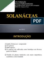 SOLANACEAE.pdf