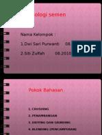 Presentation1 semen.pptx