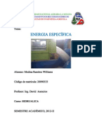 Inf2 Energia Especifica Inprimir