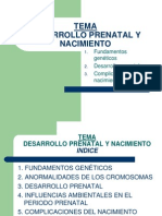 Diapositivas Tema 4 Desarrollo Prenatal