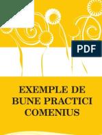COMENIUS Ghid BunePractici