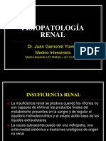 Semana 11.1.-Infuciencia Renal