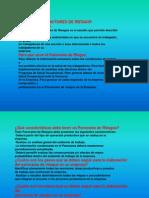 panoramadefactoresderiesgosocupacionalesn4-100919085721-phpapp02