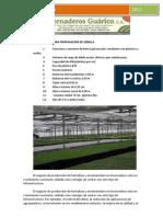plantulador-INVERNADEROS GUARICO