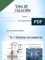 Tema 6 Sistema de Circulacion