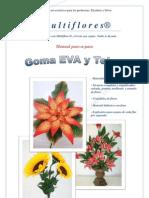 Manual paso-a-paso Multiflores MAYO 2012 PDF.pdf