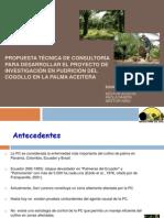 PresentacionAncupa17Dic2012
