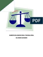 Resumen Derecho Penal