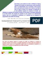 Taller de Juan Diagnostico 10-1