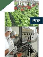 2. BUENAS PRÁCTICAS AGROPECUARIAS (BPA) Y DE MANUFACTURA (BPM)