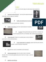 4.1 - Terra em transformação – Materiais - Constituição do mundo Material - Informação (1)