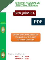Cap. 1 Organizacion Molecular