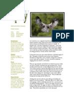 infosheetosprey