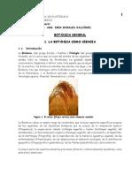 Folleto Botanica 2,010 (1)
