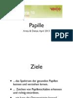 Papille (Vortrag in Aalen, Optometrie '13 der VDCO)