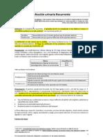 Infeccic3b3n Urinaria Recurrente Guc3ada3