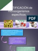 microorganismos especificos corregidos
