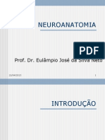 Neuroanatomia introdução