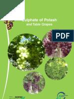 Table Grapes GB Tcm9 7208