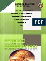 PERIODO EMBRIONARIO OV.pptx