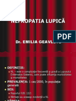 Curs Geavlete Nefropatia Lupica