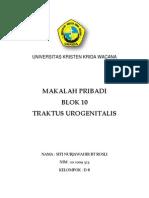 traktus urogenitalis