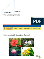 Fun Learning For Kids - Flowers