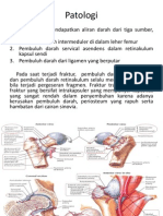 Patologi Neck Femur