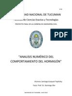 Analisis Numerrico Del Comportamiento Del Hormigon