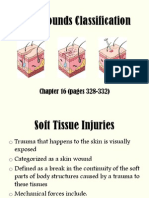 Skin Wounds Classifications Full
