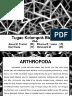 Tugas Arthropoda