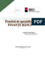 Practica Finante Banci