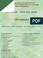 inflamação+part+1