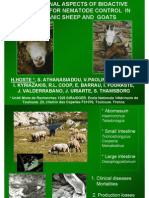 Nutritional Aspects of Bioactive Forages for Nematode Control in Organic Sheep and Goats