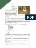 CORTES DE CARNE.doc