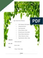 plantas emdicinales[1]