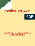 Feminin, Masculin