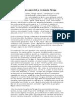 Principais características técnicas de Tárreg Trabalho editado