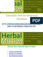 Cannabis And Its Botanical Varieties