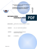 METABOLISMO ELECTROLITICO