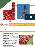 Powerpoint nr. 2 - Interacções seres vivos -Factores do Ambiente - Luz