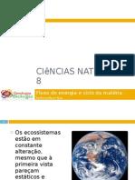 Powerpoint nr. 1 - Fluxo de energia e ciclo da matéria - Introdução