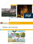 Powerpoint nr. 1 - Fluxo de energia e ciclo da matéria - rede alimentar (exercícios)
