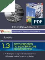 Powerpoint nr. 1 - Efeitos da Catástrofes Naturais