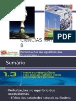 Powerpoint nr. 1 - Efeitos da Catástrofes Naturais (Intervenção humana)